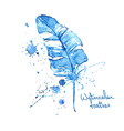 Isolated blue watercolor feather vector image vector image