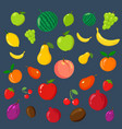 rainbow of fruits on the blue background vector image vector image