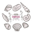seashell collection hand drawn aquatic doodle vector image vector image