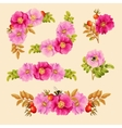 Set of decorative elements with dog rose vector image vector image