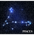 Symbol Pisces Zodiac Sign vector image vector image
