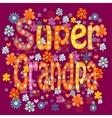 Super grandpa birthday vector image