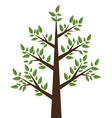 tree plant design vector image