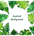 background with watercolor green leaves vector image vector image