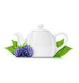 blackberry tea fresh organic vector image vector image