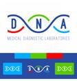 DNA logo white vector image