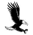 eagle in flight vector image vector image
