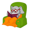 elephant chair reading cartoon vector image vector image