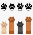 paws up pets various vector image vector image
