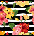 tropical hibiscus flower seamless pattern vector image vector image