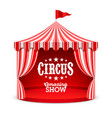 amazing circus show poster background vector image vector image