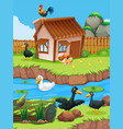 farm scene with ducks and chickens vector image vector image