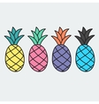 Hand drawn pineapple in doodle style vector image