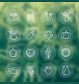 harvest vegetables farming line icons set vector image