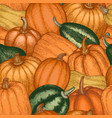 pumpkin seamless pattern hand drawn thanksgiving vector image vector image