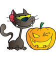 Black Cat And Winking Halloween Pumpkin vector image vector image