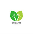 green leaf icon logo template vector image vector image