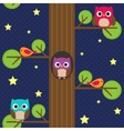 Owls at night vector image