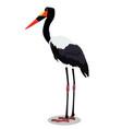 saddle billed stork cartoon bird vector image vector image