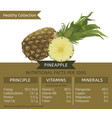 healthy collection pineapple vector image vector image