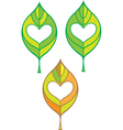 leaf with heart in it vector image vector image