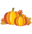 pumpkin and leaves vector image vector image
