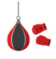 punching bag and gloves attempts on sports vector image vector image