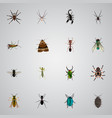 realistic arachnid insect bug and other vector image