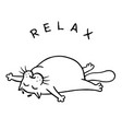 fat cat is lying down and relax isolated vector image