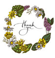 floral wreath colored celandine chamomile vector image vector image