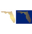 golden dotted florida map vector image