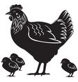 hen and chiken vector image vector image