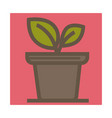 house plant in pot isolated icon indoor flower vector image vector image