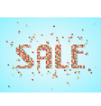 Sale scattered beads tag vector image vector image