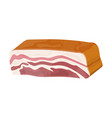 smoked ham isolated piece of delicious pork bacon vector image