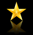 Yellow star on black vector image vector image