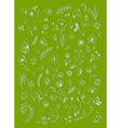 floral elements sketch vector image