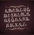 hand drawn alphabet letters handwritten vector image