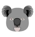 cute koala head vector image