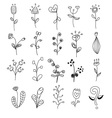 flowers different style doodle set vector image vector image