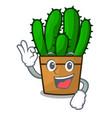 okay character spurge cactus home decor indoor vector image vector image