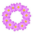 pink cosmos flower wreath vector image