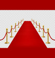 red carpet grand opening ceremonial vip event vector image vector image