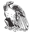 roman eagle is shown on a pedestal of trajans vector image vector image