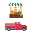woman selling vegetables set vector image