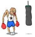a beaten boxer vector image vector image