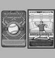 baseball player on arena sport championship vector image vector image