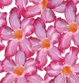 Desert Rose pink flower Seamless pattern Sketch on vector image