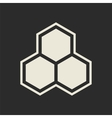 Hexagon icon Honeycomb vector image