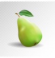 pear realistic 10eps green pear punching vector image
